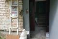 Косметический ремонт подъезда.п.Зеленоградский,улица Шоссейная,дом № 4,подъезд № 3